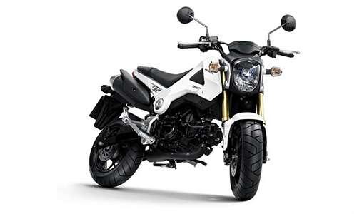 Noleggio lungo termine Honda-Moto MSX a partire da 124 €